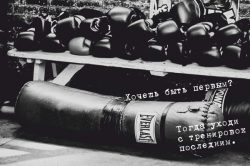 boxing_everlast